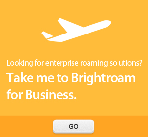 Brightroam for Business